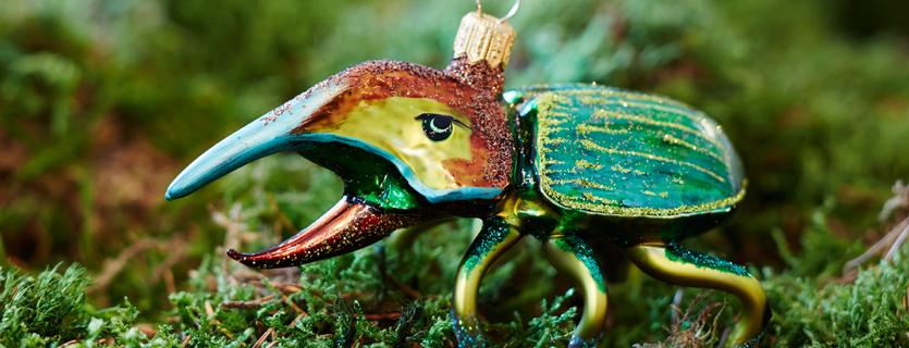 Käfer-Reptilien