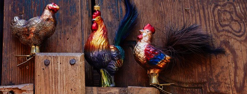 Hühner/Gänse